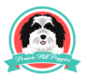 sheepadoodle puppies breeder
